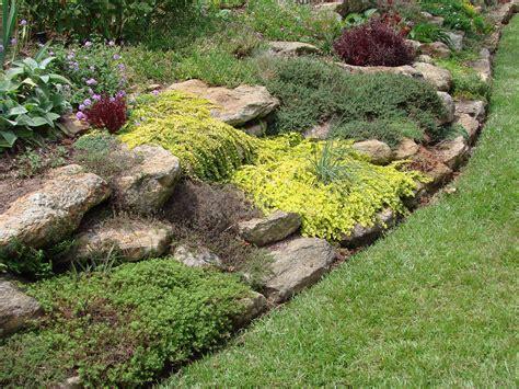 Rock Garden :  Woodland Walk At Buck Garden, Far Hills