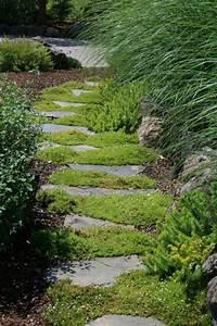 Bodendecker Statt Gras : begehbarer bodendecker statt gras zwischen die trittsteine am beet garten pinterest ~ Sanjose-hotels-ca.com Haus und Dekorationen