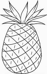 Pineapple Coloring Hawaii Luau Pages Printable Cayenne Smooth Hawaiian Aloha Template Popular Coloringhome Pdf Birthdayprintable sketch template