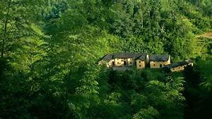 Amazing Home in Green Forest Wallpaper