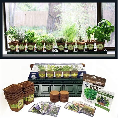 Indoor Windowsill Garden by How To Grow Your Own Indoor Herb Garden Tips And
