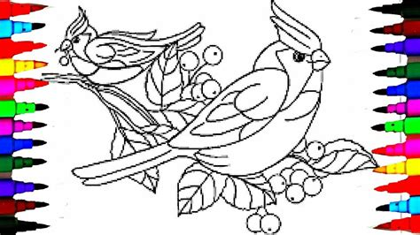 bird pictures to color learn to color birds coloring pages for children