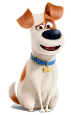 While she is at work during the day, he hangs out snowball vows to kill them and leads the flushed pets after them. Max (The Secret Life of Pets)   Heroes Wiki   Fandom ...