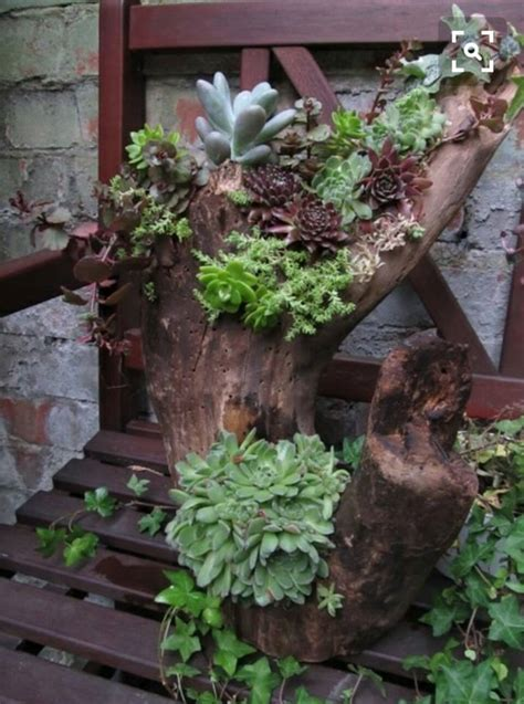 diy log succulent planter sounds   excellent idea