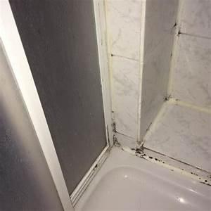 Schimmel An Silikon Entfernen : schimmel in der dusche wie schlimm ist es gesundheitsschaedlich ~ A.2002-acura-tl-radio.info Haus und Dekorationen