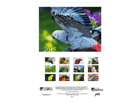 perroquetsecours calendrier mural grand format 2015 only