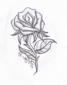 Rose' Flower Group Pencil Sketch - Drawing Artistic