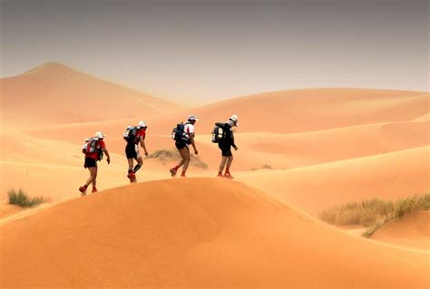help for heroes and the marathon des sables a 150 mile footrace across the lcn