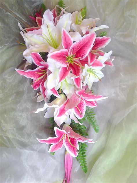 stargazer lilies  love
