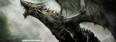 dragon facebook covers firstcoverscom