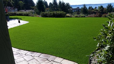 Artificial Grass Cost & Installation Guide For 2019