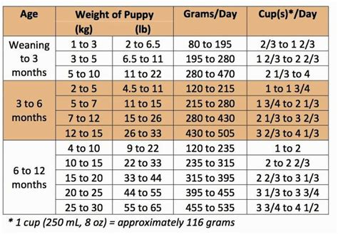 english mastiff feeding chart goldenacresdogscom