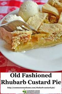 Old Fashioned Rhubarb Custard Pie Like Mom Used to Make