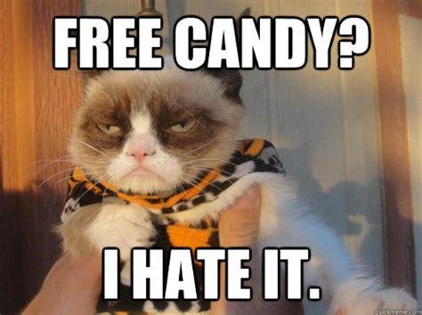 Halloween Memes 2018 - top 10 grumpy cat memes in 2018
