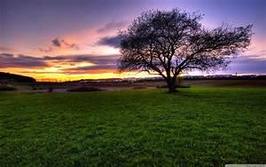 Landscape wallpaper ·① Download free beautiful HD ...