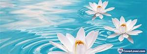 White Water Lil... White Water Lily Quotes
