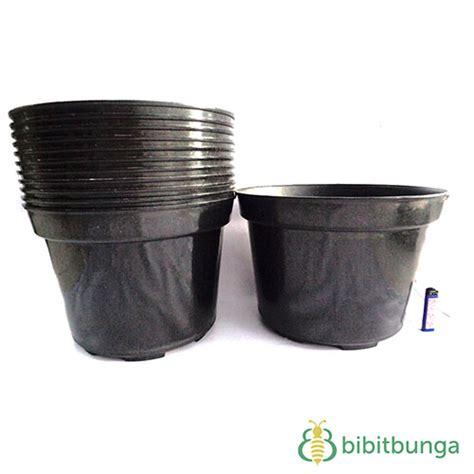pot plastik hitam cm bibitbungacom