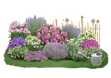 staudenbeet halbschattig pflanzplan flower power und bienenfreude neue beetkollektionen der
