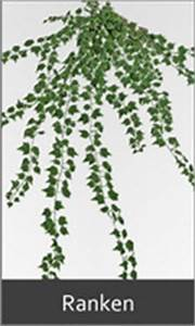 Künstlicher Efeu Meterware : k nstliche ranken pflanzen f r nassen boden ~ Eleganceandgraceweddings.com Haus und Dekorationen