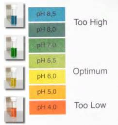 Plants and Ph Levels