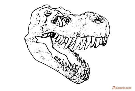 rex coloring pages  printable images  coloring