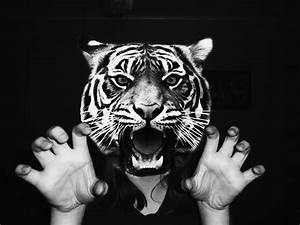tiger head tumblr Quotes