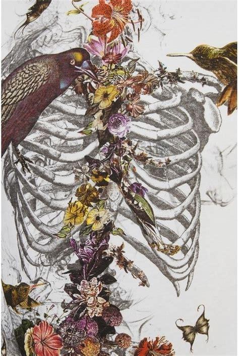Beauty Death Beautiful Birds Gorgeous Flowers Skull Nature