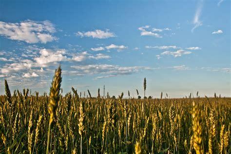 Understanding Depth of Field in Landscape Photography