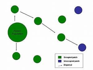 File Dispersal Diagram Jpeg