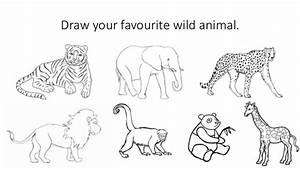 Wild and domestic animals. Habitats.
