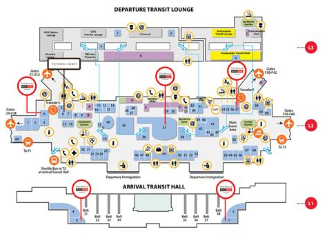 changi airport terminal  floor plan carpet vidalondon