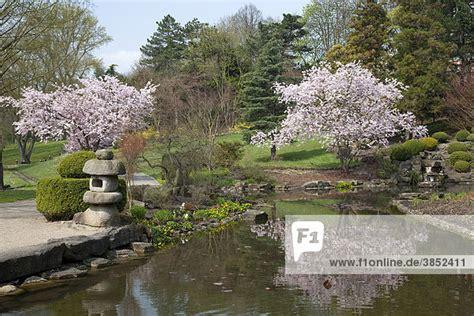 Japanischer Garten Ruhrgebiet deutschland dortmund europa ibldwh01568096 fr 252 hling im