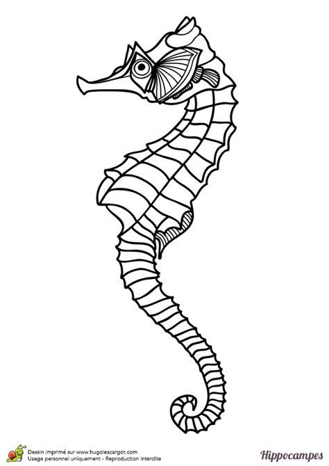 cuisine avis dessin à colorier d un hippoce réaliste hugolescargot com