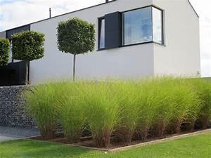 beautiful photo jardin contemporain photos lalawgroupus With ordinary amenagement entree exterieure maison 13 terrasse moderne contemporain terrasse et patio