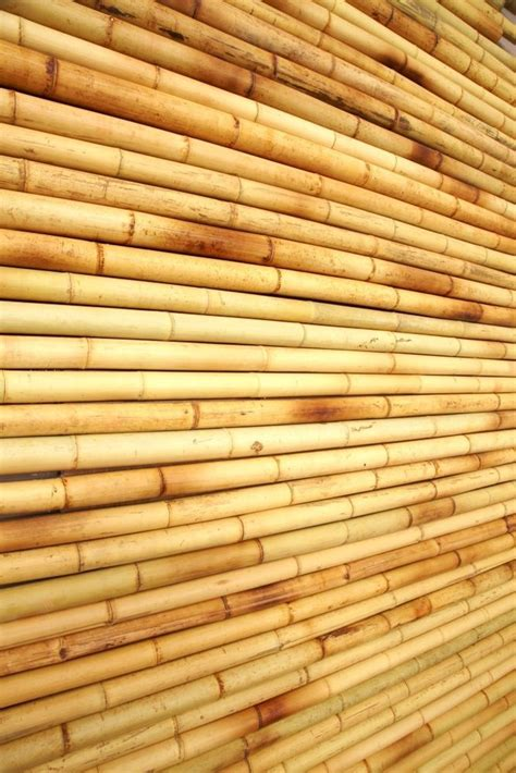 tropical bamboo wall covering panels home decor easy