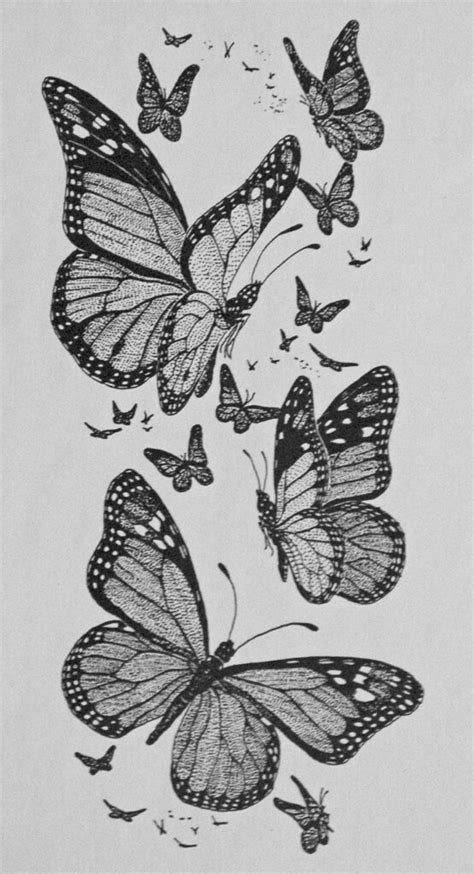 Drawing: Monarch Butterflies | A pen & ink drawing done