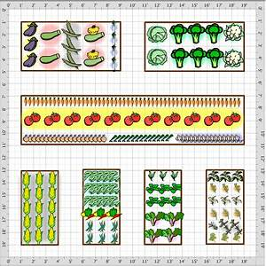 How to Build and Arrange a Raised Bed Vegetable Garden ...