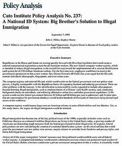 illegal immigration essay thesis