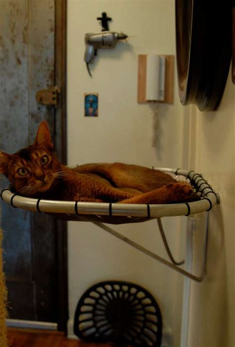 levitating pet beds cat hammock