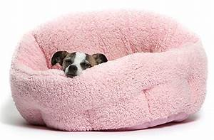 best small dog beds reviews and tips for choosing the With small girl dog beds