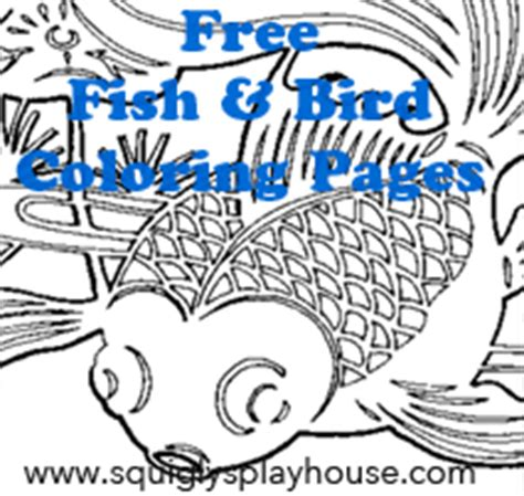 bird  fish coloring pages  squiglys playhouse