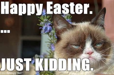 Happy Easter Meme - happy easter just kidding pictures photos and images for facebook tumblr pinterest and