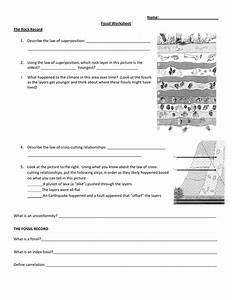 Fossil Record Worksheet Answers