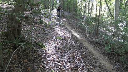 Enduro Tested Bikes Hours Singletracks Mtb Trail