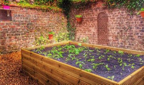 How To Grow Vegetables Using The No-dig Method In Winter