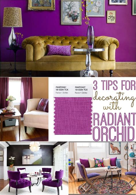 3 Tips For Decorating With Pantone's Radiant Orchid  Home