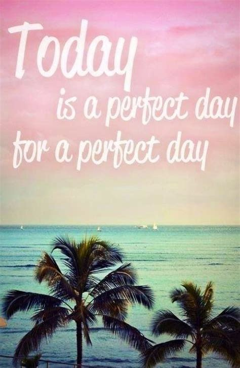 summer inspirational quotes perfect day life quotes quotes positive quotes photography summer quote tropical morning good