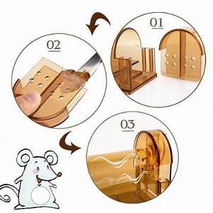 Comment Attraper Une Souris : comment attraper une souris vivant rats et souris ~ Dailycaller-alerts.com Idées de Décoration