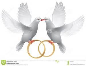 white wedding album imágenes de palomas con anillos de boda imagui