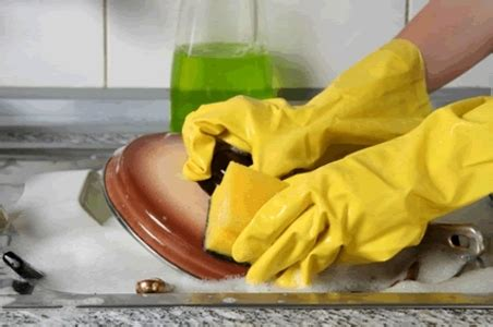 food safety  kitchen sanitation safeschools
